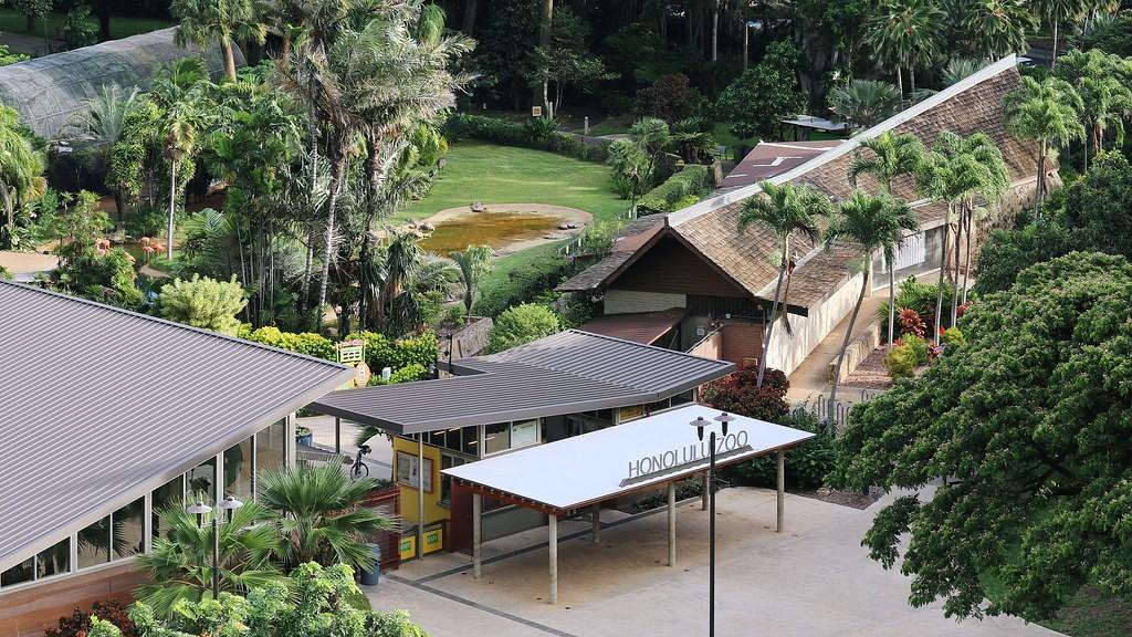 Honolulu Zoo